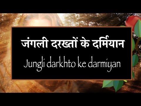 जंगली दरख्तों के दर्मियान Jungli darkhto ke darmiyan